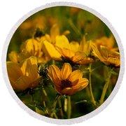 Maximilian Sunflowers Round Beach Towel