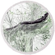 Misty Morn Round Beach Towel
