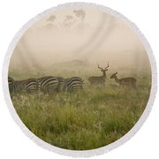 Misty Morning On The Savannah Round Beach Towel