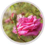 Moondrops 85 Hybrid Tea Rose, Pink Rose Originally Produced By  Round Beach Towel