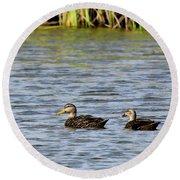 Mottled Ducks Round Beach Towel
