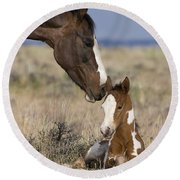Mustang Mare And Foal Round Beach Towel