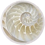 Nautilus 2by3 Round Beach Towel