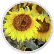 Nice Sunflowers Round Beach Towel