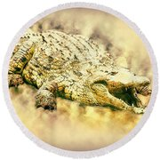 Nile River Crocodile Round Beach Towel