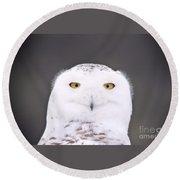 Snowy Owl 3256 A.k.a. Smiling Owl Round Beach Towel