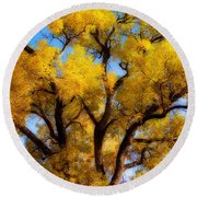 Old Giant  Autumn Cottonwood Orton Round Beach Towel
