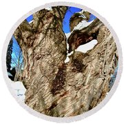 Old Willow Tree Round Beach Towel