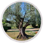 Olive Tree Round Beach Towel