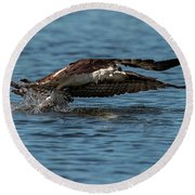 Osprey Fishing Round Beach Towel