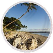 Palm And Driftwood Round Beach Towel