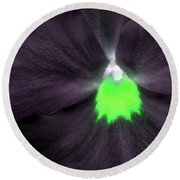 Pansy Power 73 Round Beach Towel