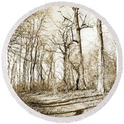 Path In A Forest Round Beach Towel