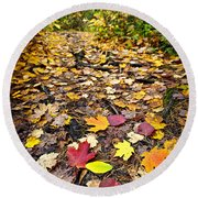 Path In Fall Forest Round Beach Towel by Elena Elisseeva