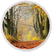 Path Of Red Leaves Towards Light In Fall Forest Round Beach Towel