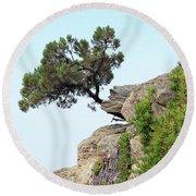 Pine Tree On A Rock Round Beach Towel