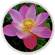 Pink Blooming Lotus Round Beach Towel
