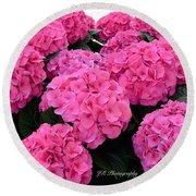Pink Hydrangeas Round Beach Towel