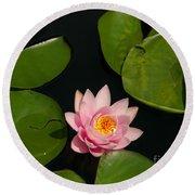 Pink Lotus Waterlily Round Beach Towel