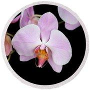 Pink Orchid Vii Round Beach Towel