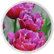 Pink Parrot Tulips Round Beach Towel