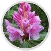 Pink Rhododendron 0070 Round Beach Towel