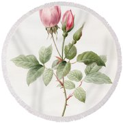 Pink Rose And Buds Round Beach Towel