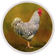 Plymouth Rock Rooster Round Beach Towel