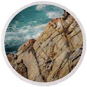 Point Lobos California Round Beach Towel