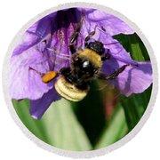 Pollination 2 Round Beach Towel