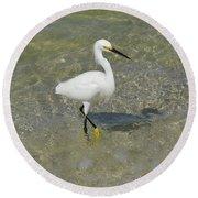 Posing White Egret Bird Round Beach Towel
