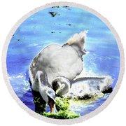 Psychedelic Mute Swan And Cygnet Feeding Round Beach Towel