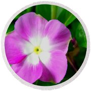 Purple Periwinkle Flower 1 Round Beach Towel