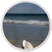Queen Conch On The Beach Round Beach Towel