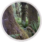 Quinault Rain Forest 3152 Round Beach Towel