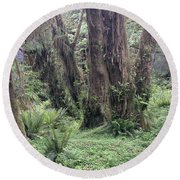 Quinault Rain Forest 3156 Round Beach Towel