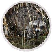 Raccoon Fishing Round Beach Towel