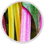 Rainbow Chard Round Beach Towel