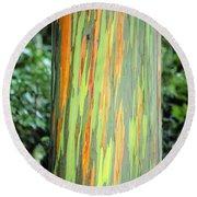 Rainbow Eucalyptus Round Beach Towel