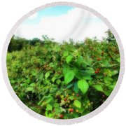 Raspberry Fields 2  Round Beach Towel