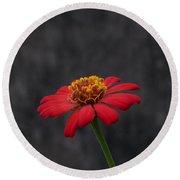 Red Flower 1 Round Beach Towel