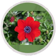 Red Anemone Coronaria 1 Round Beach Towel