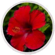 Red Hibiscus - Kauai Round Beach Towel