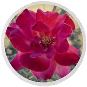 Red Rose Round Beach Towel