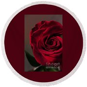 Red Rose Macro 6 Round Beach Towel