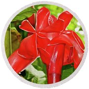 Red Tropical Flower In Huntington Botanical Gardens In San Marino-california Round Beach Towel