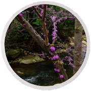 Redbud And River Round Beach Towel