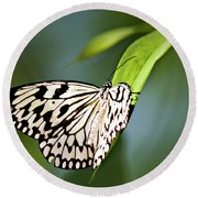Rice Paper Butterfly 5 Round Beach Towel