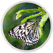 Rice Paper Butterfly 7 Round Beach Towel