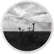 Rio Rancho Round Beach Towel